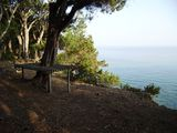 Stone cottage in olive grove:private beach access and splendid sea view