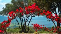 A great villa with a beautiful view in Corsica