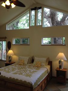 'Tree house view' of monkeypod and tamarind trees. Vaulted ceiling.