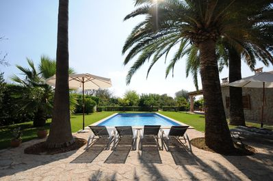 Sun loungers in the garden and pool