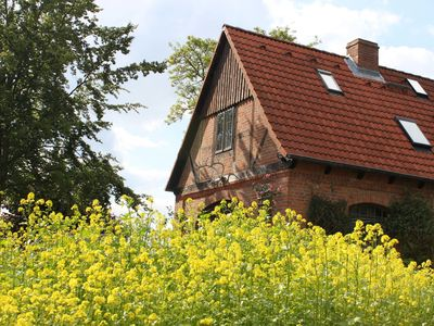 Photo for Apartment / app. for 2 guests with 45m² in Schönwalde am Bungsberg (92727)