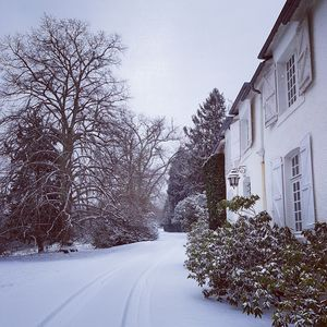 Clos Mirabel in Winter -  Open for Christmas and New Year