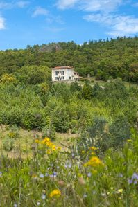 "Photo for New apartment for 4 people in the heart of Tuscany ""Il Girasole"""