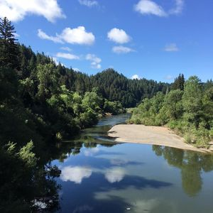 """Photo for """"Happy Days""""Walk to Everything!River.Armstrong Woods!"""
