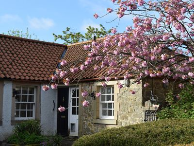 Photo for Hedgehog Cottage- located in East Lothian