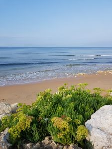 Photo for Oléron charming house, beach at 800 meters and supervised beach bike paths