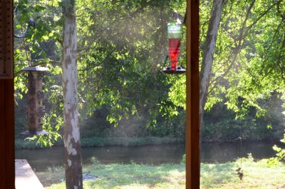 The creek is picture perfect from the screened in porch.