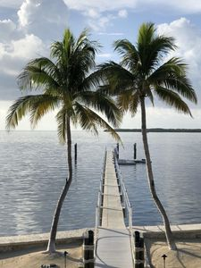 Photo for Upper Keys Exclusive Oceanfront Estate with Swimming Pool and Dockage