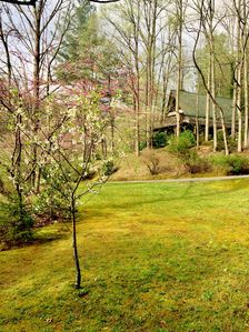 Garden of Ellijay Cottage from the Orchard with redbud and cherry flowers.