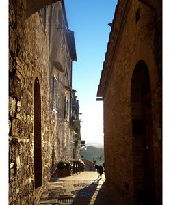 Photo for Apartment in San Gimignano with 1 bedrooms sleeps 3