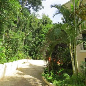 Photo for Tranquility of the rain forest and beautiful beaches 400m.