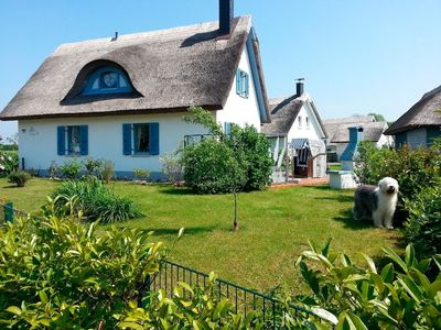 Photo for Holiday house for 6 guests with 100m² in Glowe (37837)