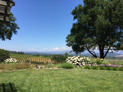 Photo for Superb Healdsburg Location, Spectacular Views, Minutes to Town