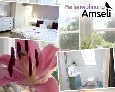 Photo for Modern, small apartment - vacation in the Lauenburg Lakes Nature Park / near Mölln