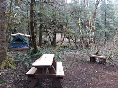 Photo for Rainforest retreat glamping tent 4