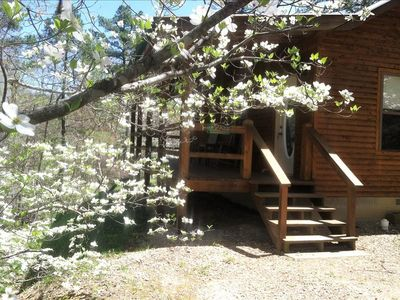 Photo for 3 Miles to Kings River! Safari Cabin, King, GIANT SPA TUB, Fireplace, Hiking, Tranquil and Private