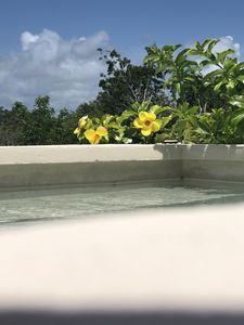 Photo for Private roof top pool, Penthouse in the most desired area in Luum Zama,  Tulum