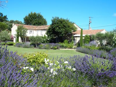 Photo for At the foot of Mont Ventoux, big Mas renovated with 4000m2 pool for 12 people