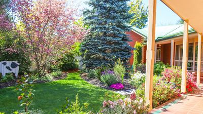 Magnificent garden for all seasons.  Fully fenced and private