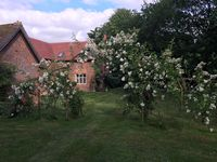 Lovely home, great garden, perfect location and very friendly owners