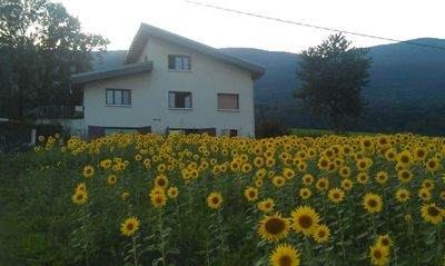 Photo for Small apartment homestay