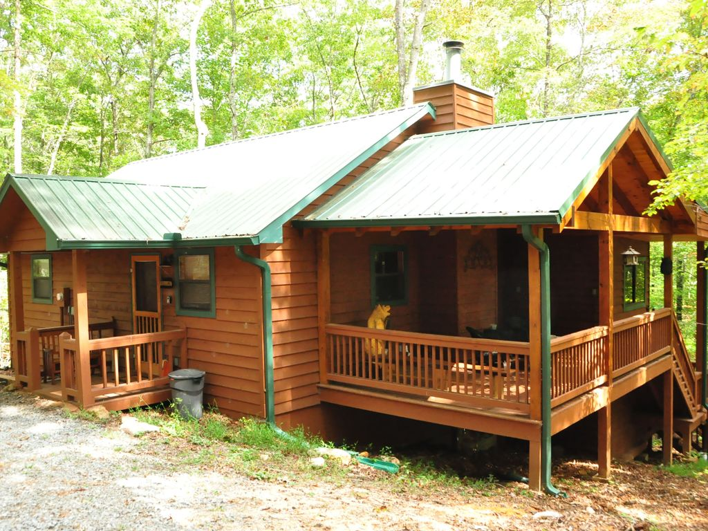 private pet friendly cabin in blue ridge georgia