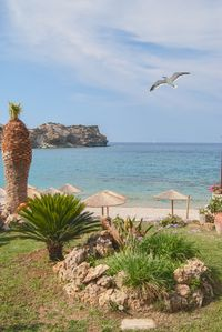 Photo for The Beachfront apartment is part of the Villa Omega complex at Lygaria Beach. En