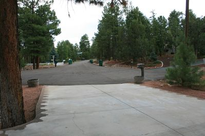 This is the view of the street from the driveway. It is a great neighborhood!