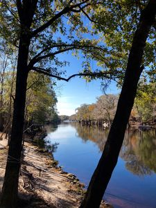 Photo for Ichetucknee Springs/Santa Fe River at the Comfortable Hideaway Cottage