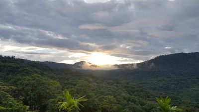 Photo for NEW LISTING, Turi Uha, A COUPLES GETAWAY on 2,5 acres  of PRIVACY TO ENJOY