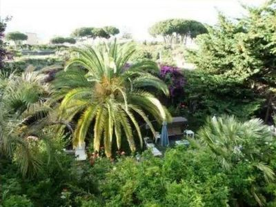 Photo for The garden of Villa Anna, Oplonti room sea view