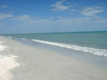 Sanibel Sea School, Sanibel, FL, USA