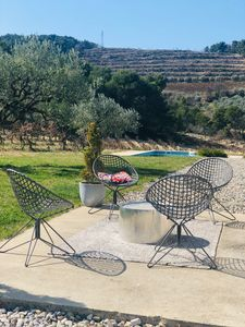 Photo for Charming villa, surrounded by vineyards and olive groves