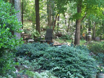 Photo for Relax 12miles from Tryon International Equestrian Center.