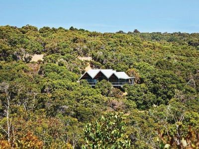 Photo for THE TREE HOUSE Eagle Bay