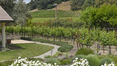 Photo for Stunning  Vineyard View Home on Iconic Silverado Trail in Beautiful Napa Valley