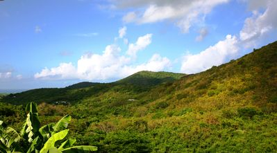 Enjoy the view of this tropical paradise, one mile away from the rainforest.