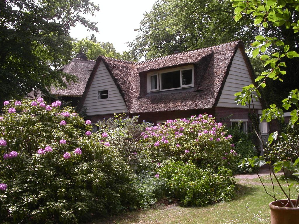 Romantic House With Thatched Roof Garden Child 2059492