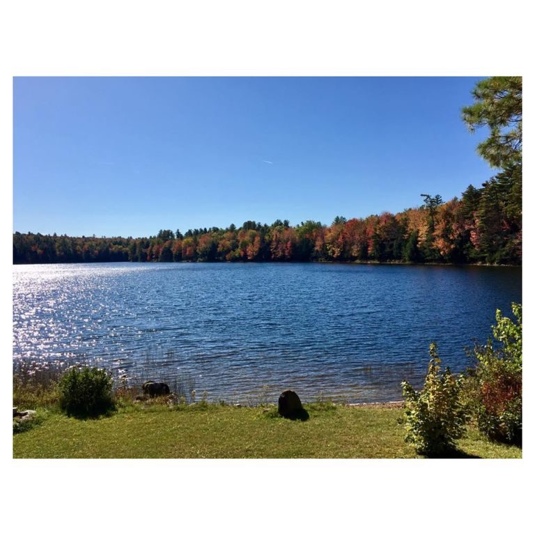 Www Rentalhomes Com: Classic Maine Cottage Located On A Point, Sidney