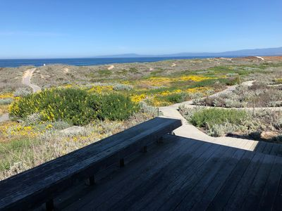 Photo for MONTEREY DUNES NEWLY UPDATED OCEANFRONT 3BR SINGLE STORY GETAWAY RETREAT