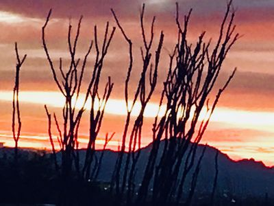Photo for Amazing sunsets over Mts. and Views of Tucson from a ridge in Catalina Foothills
