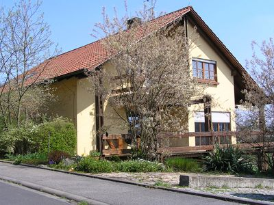 Photo for Bright apartment in the vineyards, directly in the Maindreieck