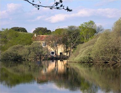 View of the watermill from the lake