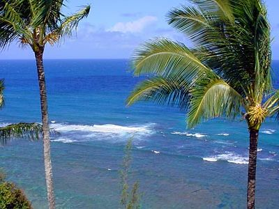 THE MOST SPECTACULAR OCEAN VIEWS!