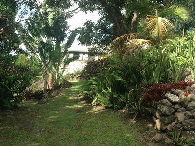 Photo for Parrots Perch with cottage nestled in the rainforest and mature tropical garden