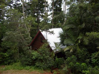 Rose Gum Cottage nestled in the forest