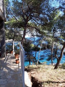 Photo for secluded bay Apartement Bonkovic