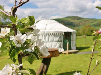 Photo for Gorgeous yurt & facilities great for families & groups, pet-friendly, sleeps 6
