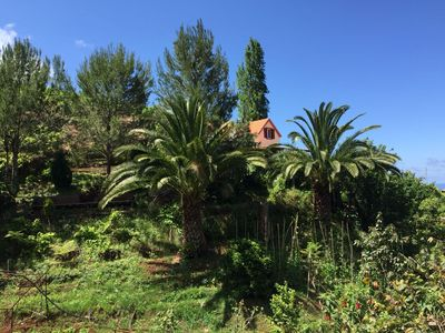 Photo for Casa d'Olívia - Levada do Castelejo, cottage for 2-5 people