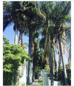 Photo for Very welcoming bungalow in the heart of Weho just one block off Melrose